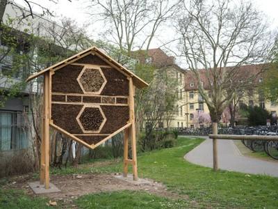Klinikum_Insektenhaus