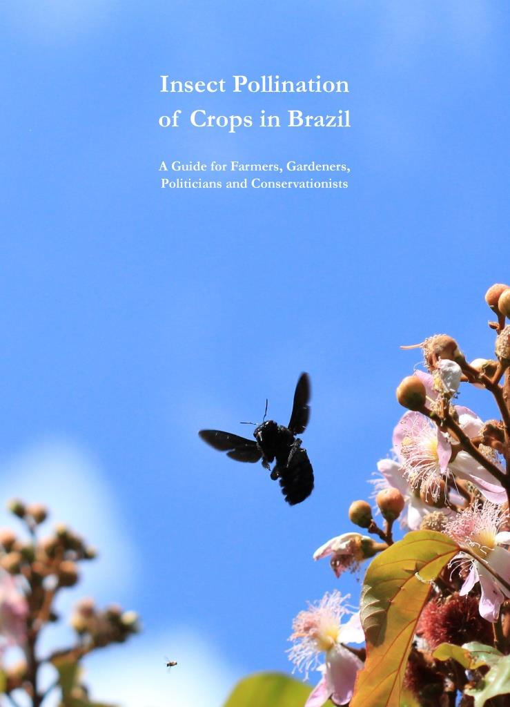 Insect Pollination Of Crops In Brazil