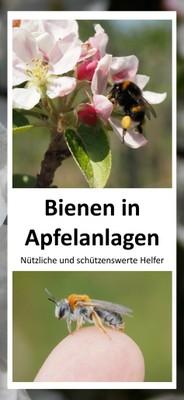 190306_Flyer Bienen in Apfelanlagena.jpg